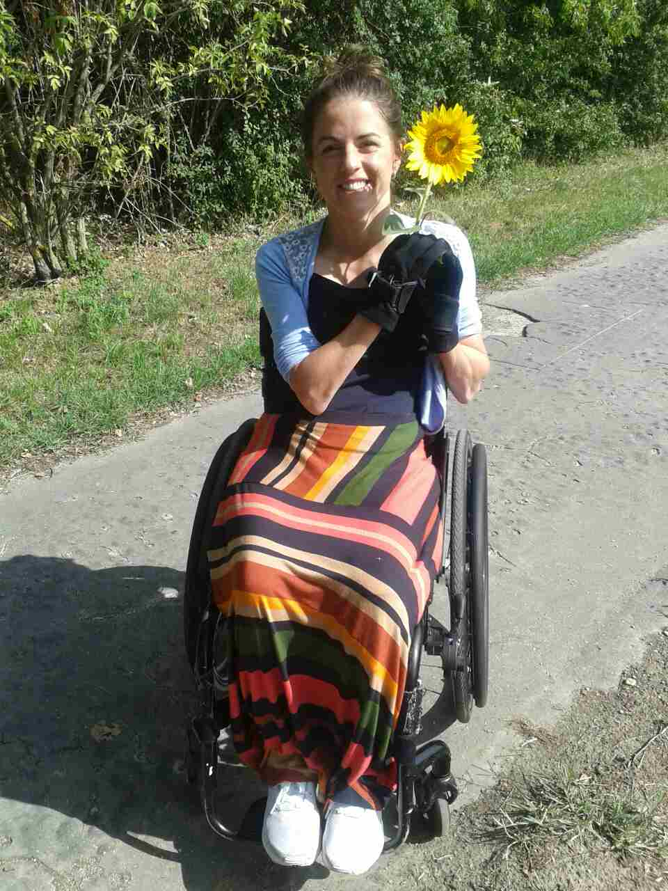 Slovakian sunflower